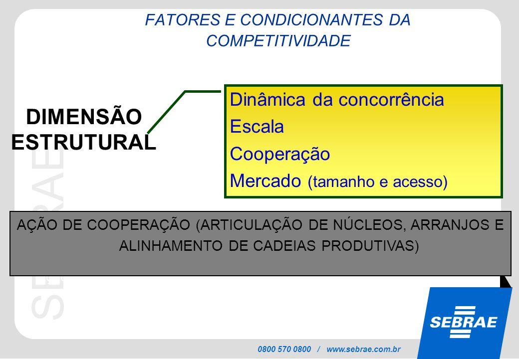 SEBRAE 0800 570 0800 / www.sebrae.com.br DIMENSÃO ESTRUTURAL Dinâmica da concorrência Escala Cooperação Mercado (tamanho e acesso) * Ação de Associati