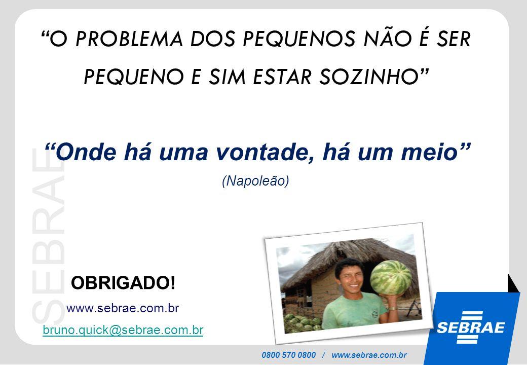 SEBRAE 0800 570 0800 / www.sebrae.com.br OBRIGADO! www.sebrae.com.br bruno.quick@sebrae.com.br O PROBLEMA DOS PEQUENOS NÃO É SER PEQUENO E SIM ESTAR S