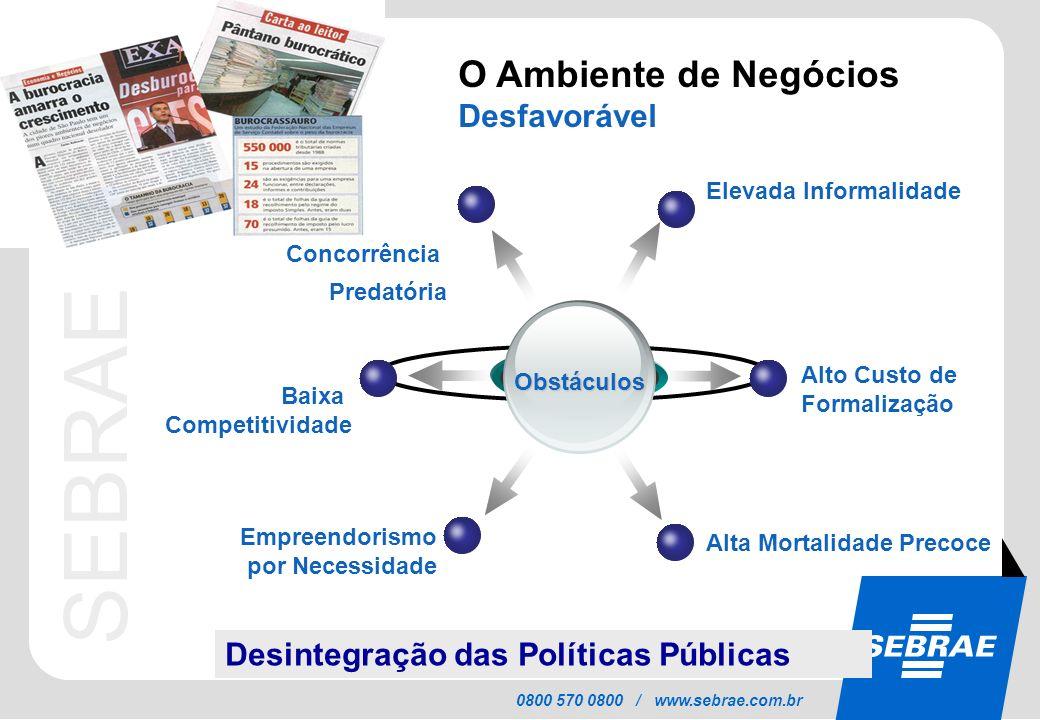 SEBRAE 0800 570 0800 / www.sebrae.com.br O Ambiente de Negócios Desfavorável Obstáculos Elevada Informalidade Concorrência Predatória Alto Custo de Fo