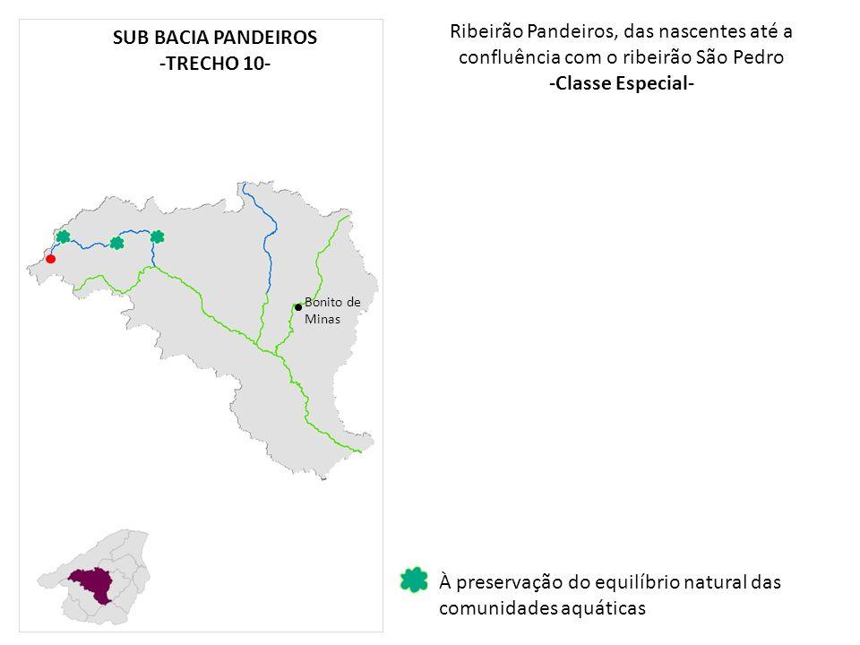 Ribeirão Pandeiros, das nascentes até a confluência com o ribeirão São Pedro -Classe Especial- Bonito de Minas À preservação do equilíbrio natural das