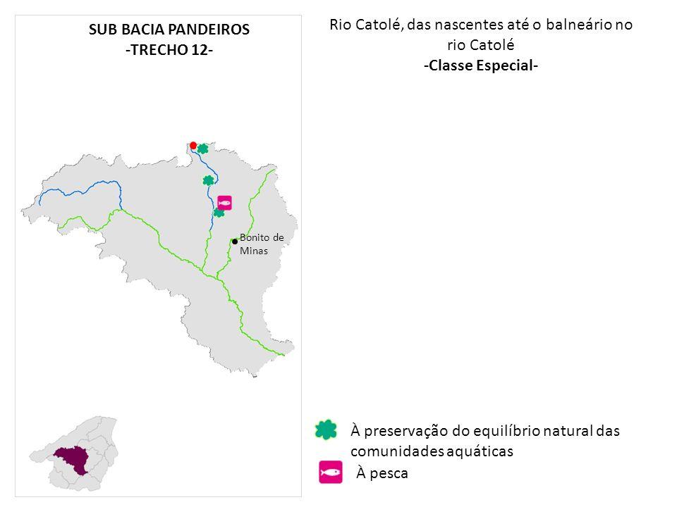 Rio Catolé, das nascentes até o balneário no rio Catolé -Classe Especial- Bonito de Minas À preservação do equilíbrio natural das comunidades aquática
