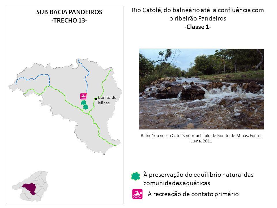 Rio Catolé, do balneário até a confluência com o ribeirão Pandeiros -Classe 1- Bonito de Minas À preservação do equilíbrio natural das comunidades aqu