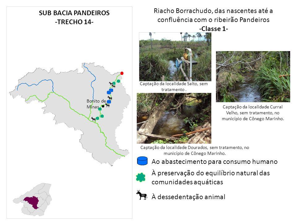 Riacho Borrachudo, das nascentes até a confluência com o ribeirão Pandeiros -Classe 1- Bonito de Minas À preservação do equilíbrio natural das comunid