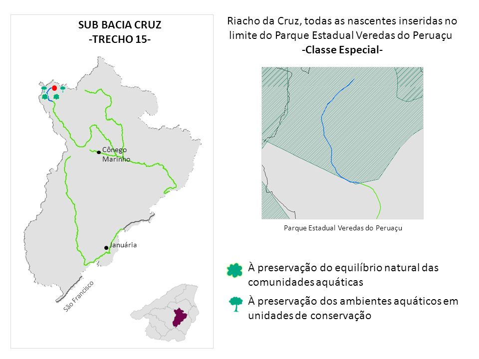 Riacho da Cruz, todas as nascentes inseridas no limite do Parque Estadual Veredas do Peruaçu -Classe Especial- Januária Cônego Marinho À preservação d