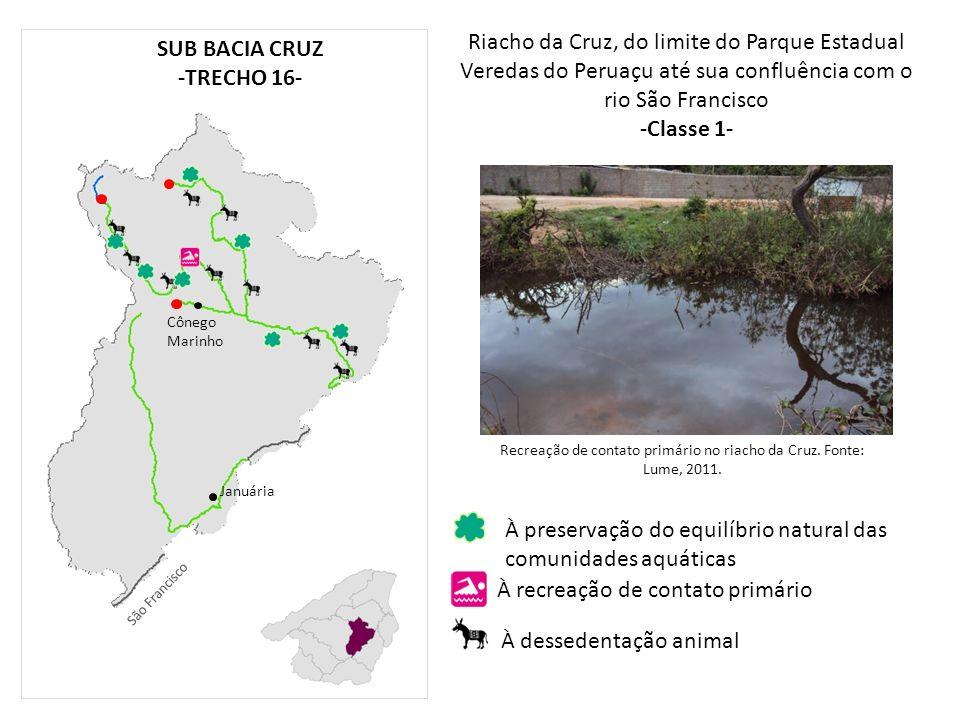 Riacho da Cruz, do limite do Parque Estadual Veredas do Peruaçu até sua confluência com o rio São Francisco -Classe 1- Cônego Marinho Januária À prese