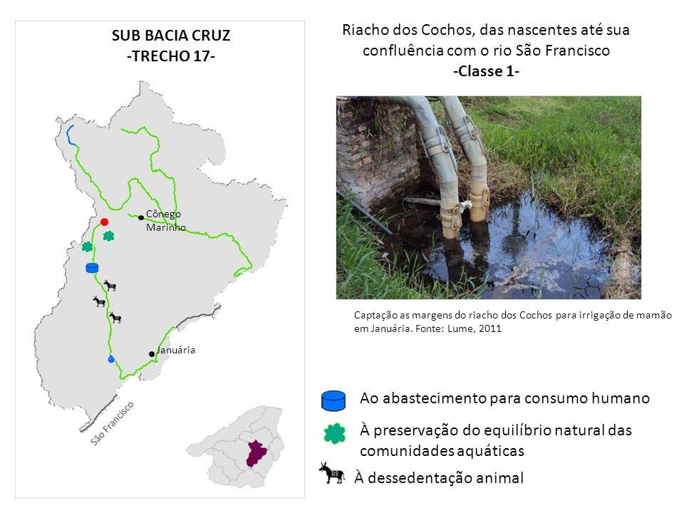 Riacho dos Cochos, das nascentes até sua confluência com o rio São Francisco -Classe 1- Cônego Marinho Januária À preservação do equilíbrio natural da