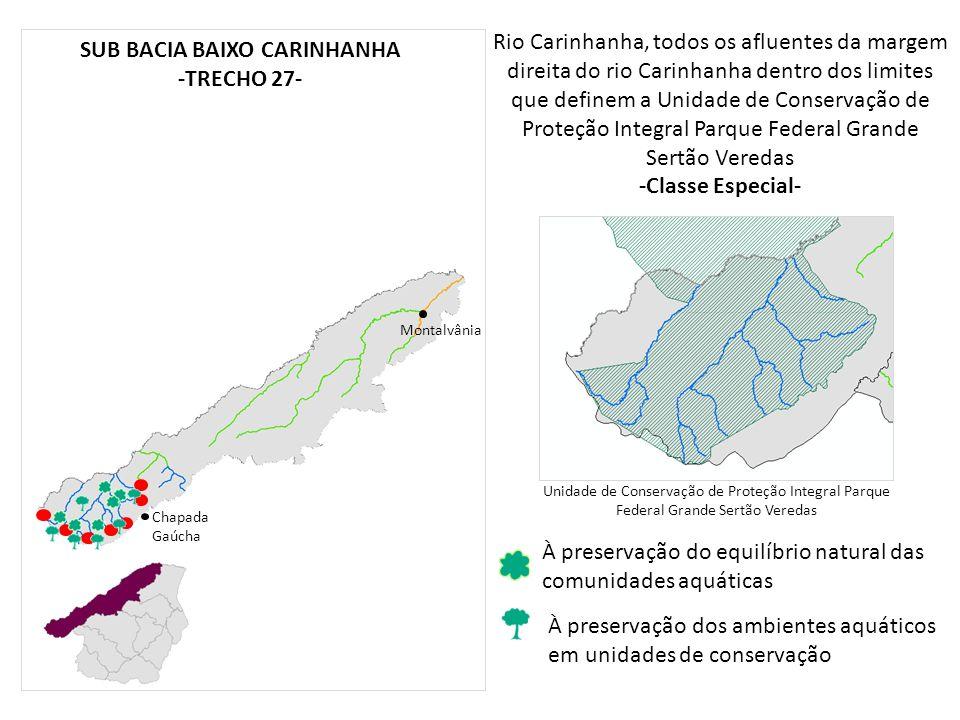 Rio Carinhanha, todos os afluentes da margem direita do rio Carinhanha dentro dos limites que definem a Unidade de Conservação de Proteção Integral Pa