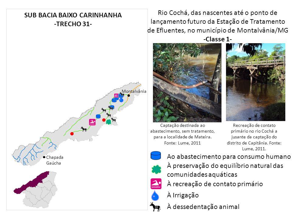 Rio Cochá, das nascentes até o ponto de lançamento futuro da Estação de Tratamento de Efluentes, no município de Montalvânia/MG -Classe 1- Chapada Gaú