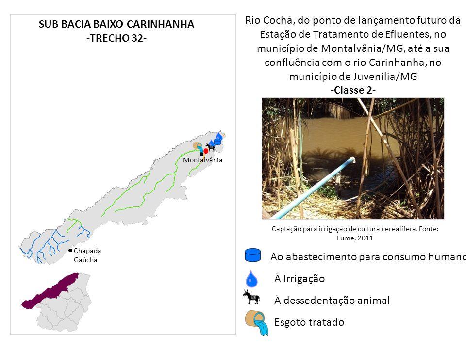 Rio Cochá, do ponto de lançamento futuro da Estação de Tratamento de Efluentes, no município de Montalvânia/MG, até a sua confluência com o rio Carinh
