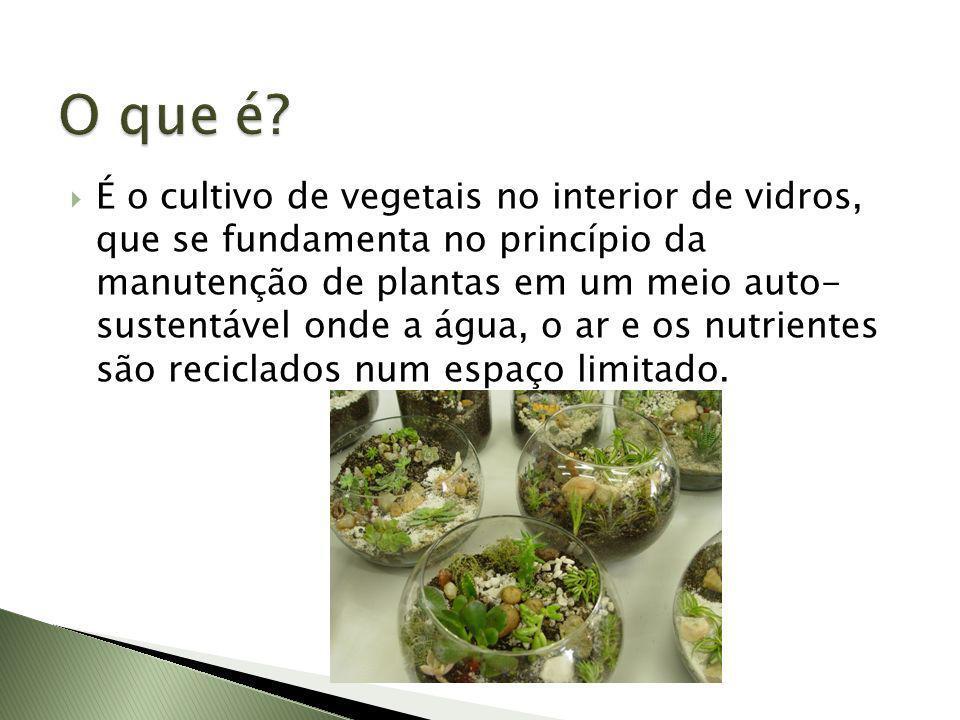 É o cultivo de vegetais no interior de vidros, que se fundamenta no princípio da manutenção de plantas em um meio auto- sustentável onde a água, o ar