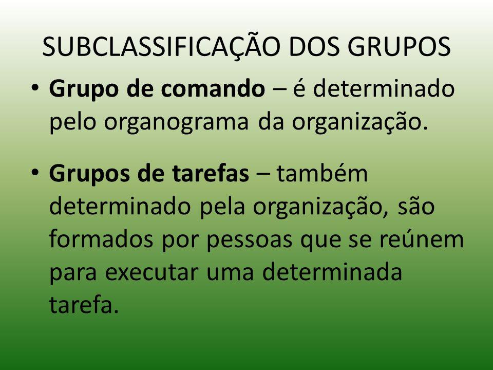 SUBCLASSIFICAÇÃO DOS GRUPOS Grupo de comando – é determinado pelo organograma da organização. Grupos de tarefas – também determinado pela organização,