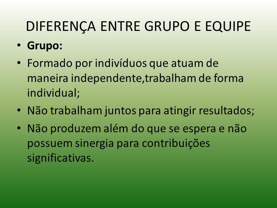 DIFERENÇA ENTRE GRUPO E EQUIPE Grupo: Formado por indivíduos que atuam de maneira independente,trabalham de forma individual; Não trabalham juntos par