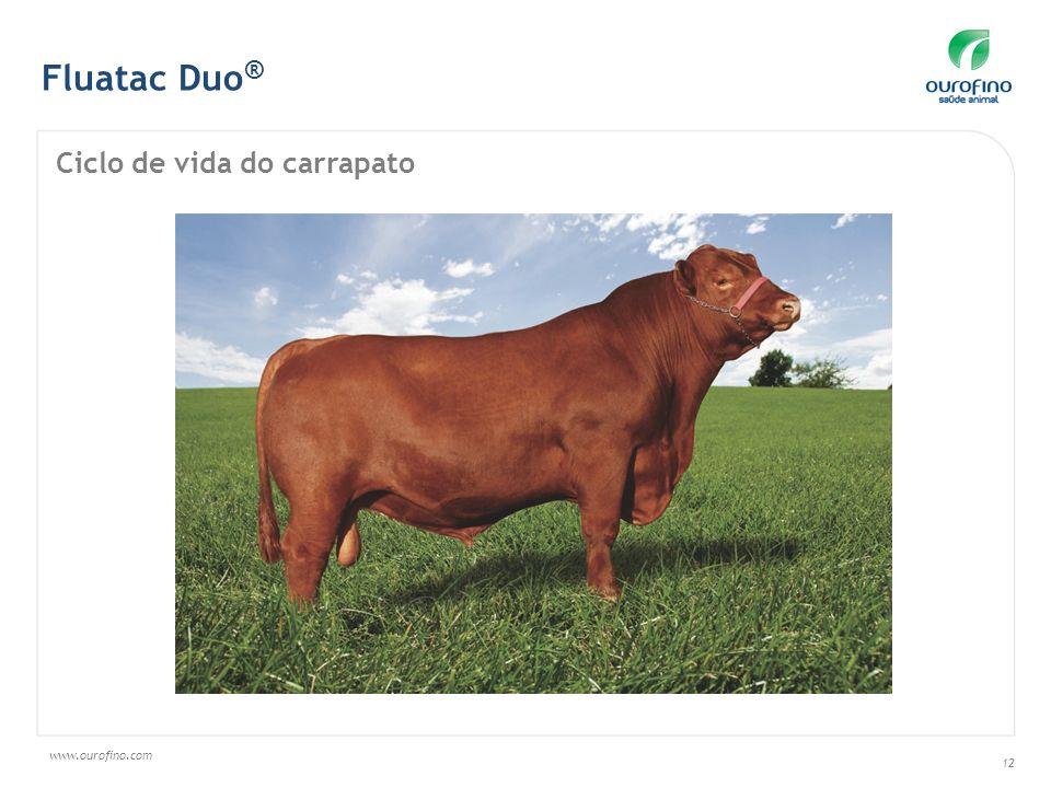 www.ourofino.com 12 Fluatac Duo ® Ciclo de vida do carrapato