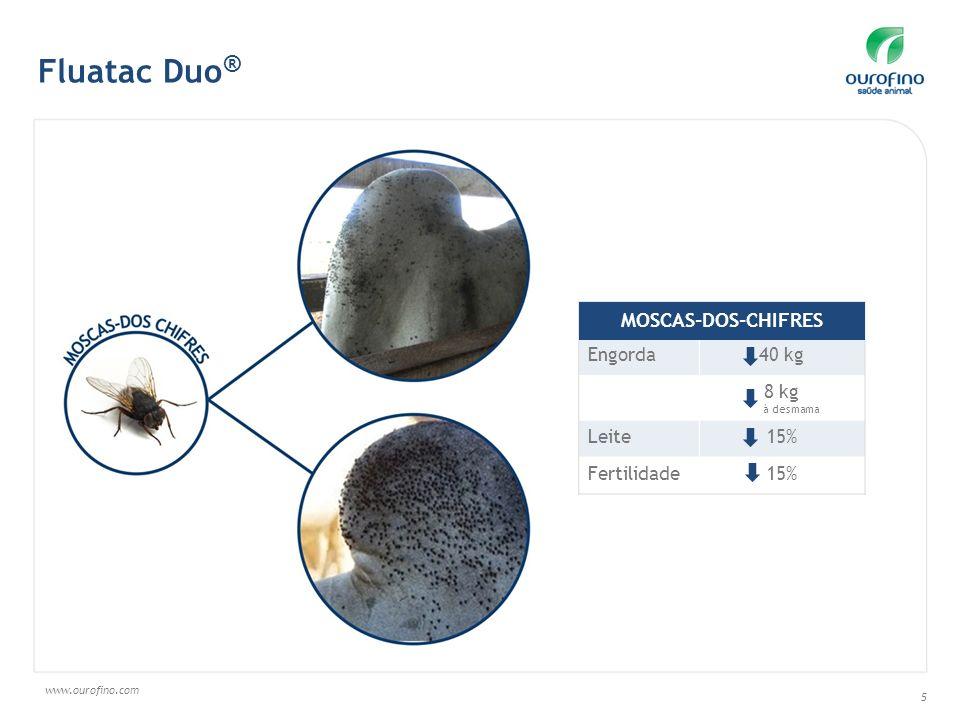 www.ourofino.com 5 Engorda40 kg 8 kg à desmama Leite15% Fertilidade15% MOSCAS-DOS-CHIFRES Fluatac Duo ®