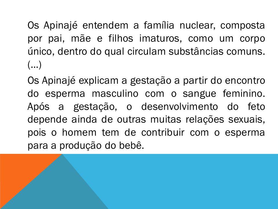 Os Apinajé entendem a família nuclear, composta por pai, mãe e filhos imaturos, como um corpo único, dentro do qual circulam substâncias comuns. (...)