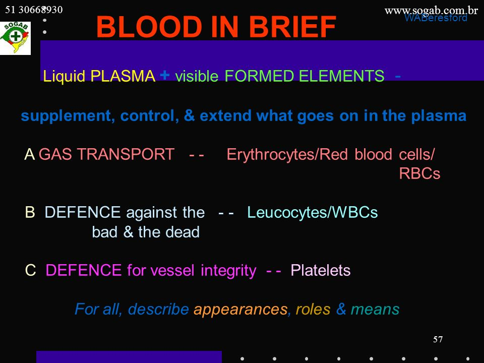 www.sogab.com.br 51 30668930 57 BLOOD IN BRIEF Liquid PLASMA + visible FORMED ELEMENTS - supplement, control, & extend what goes on in the plasma A GA