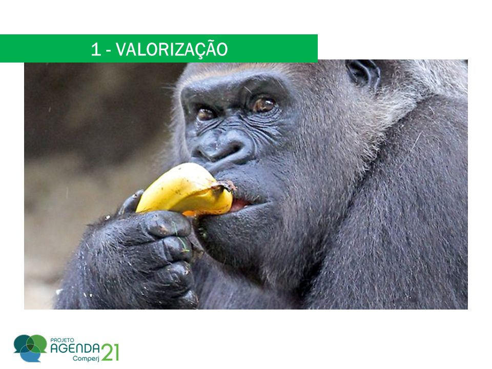 1 - VALORIZAÇÃO