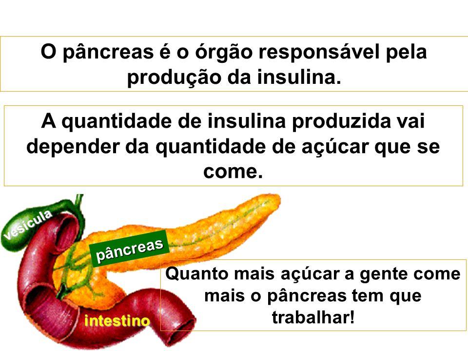 pâncreas intestino vesícula O pâncreas é o órgão responsável pela produção da insulina. Quanto mais açúcar a gente come mais o pâncreas tem que trabal