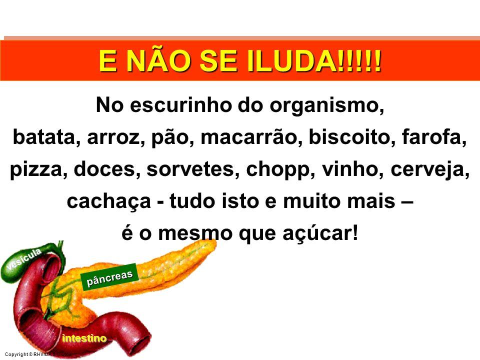 Copyright © RHVIDA S/C Ltda. pâncreas intestino vesícula E NÃO SE ILUDA!!!!! No escurinho do organismo, batata, arroz, pão, macarrão, biscoito, farofa