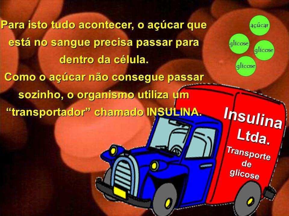 Copyright © RHVIDA S/C Ltda. www.rhvida.com.br glicose açúcar glicose Insulina Ltda. Ltda. Transportedeglicose Para isto tudo acontecer, o açúcar que
