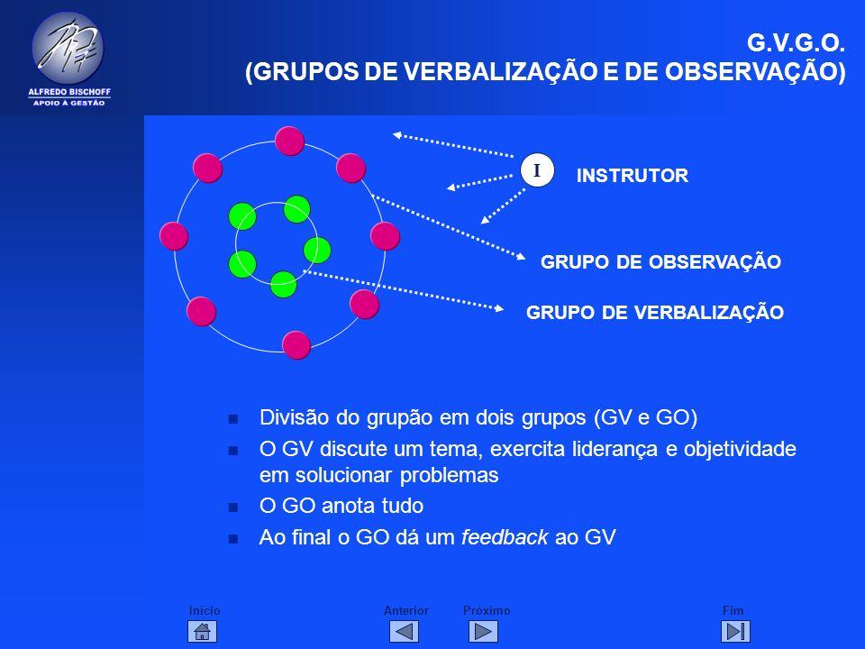 InícioFimAnteriorPróximo n Divisão do grupão em dois grupos (GV e GO) n O GV discute um tema, exercita liderança e objetividade em solucionar problema