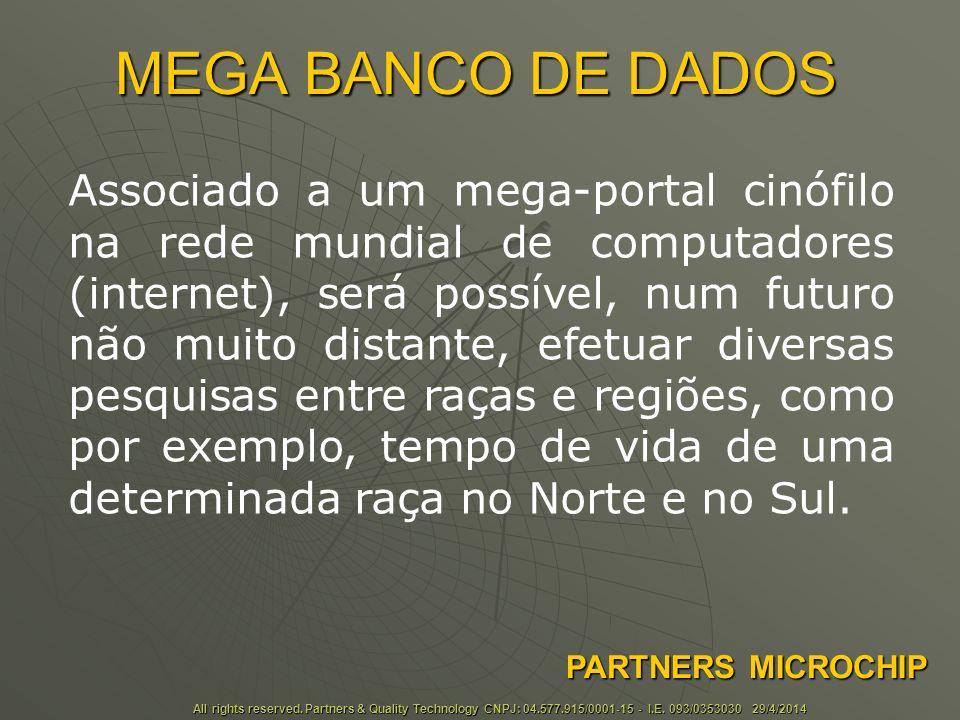 MEGA BANCO DE DADOS All rights reserved.