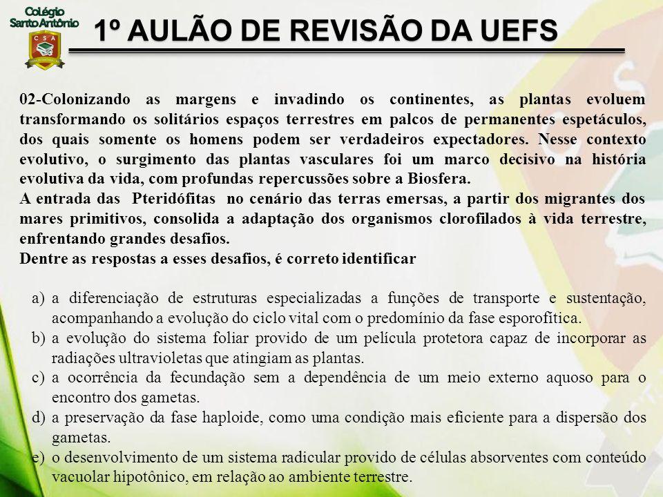 1º AULÃO DE REVISÃO DA UEFS 02-Colonizando as margens e invadindo os continentes, as plantas evoluem transformando os solitários espaços terrestres em