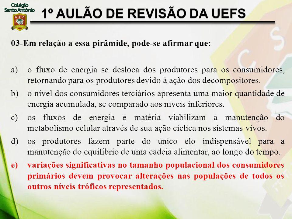 1º AULÃO DE REVISÃO DA UEFS 03-Em relação a essa pirâmide, pode-se afirmar que: a)o fluxo de energia se desloca dos produtores para os consumidores, r