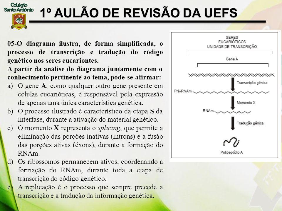 05-O diagrama ilustra, de forma simplificada, o processo de transcrição e tradução do código genético nos seres eucariontes. A partir da análise do di