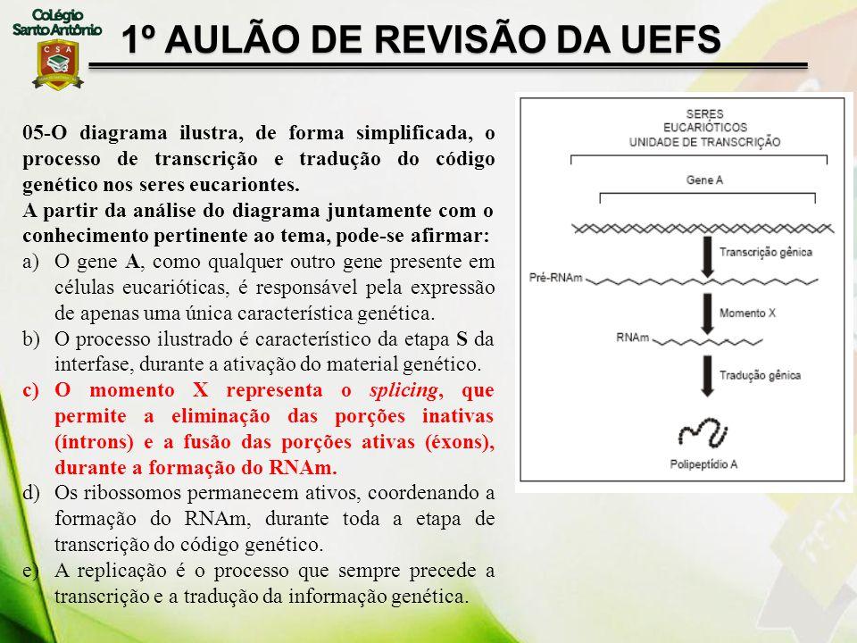 1º AULÃO DE REVISÃO DA UEFS 05-O diagrama ilustra, de forma simplificada, o processo de transcrição e tradução do código genético nos seres eucarionte
