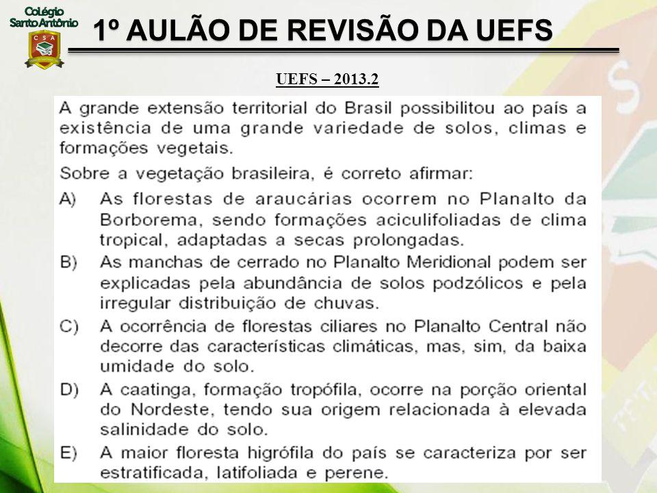 1º AULÃO DE REVISÃO DA UEFS UEFS – 2013.2