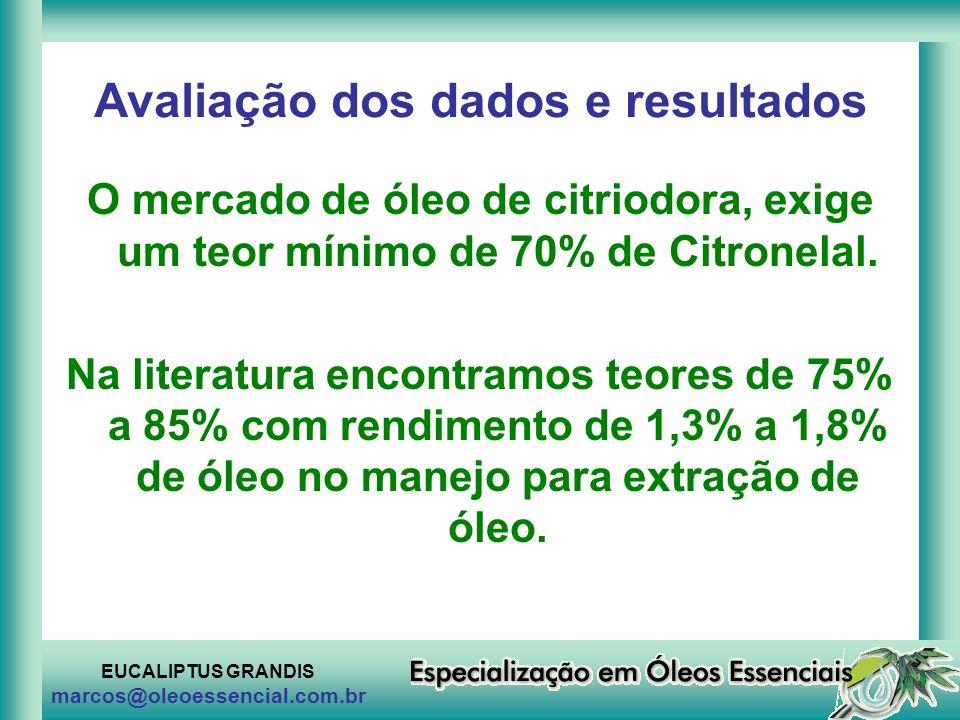 EUCALIPTUS GRANDIS marcos@oleoessencial.com.br Avaliação dos dados e resultados O mercado de óleo de citriodora, exige um teor mínimo de 70% de Citron