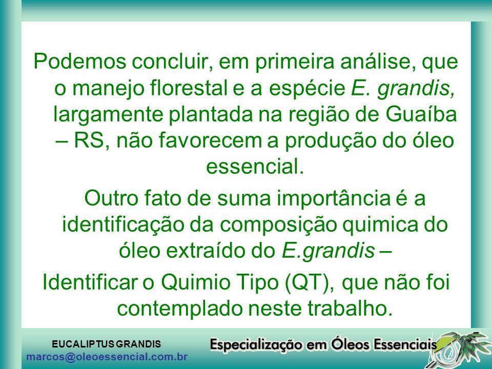 EUCALIPTUS GRANDIS marcos@oleoessencial.com.br Podemos concluir, em primeira análise, que o manejo florestal e a espécie E. grandis, largamente planta
