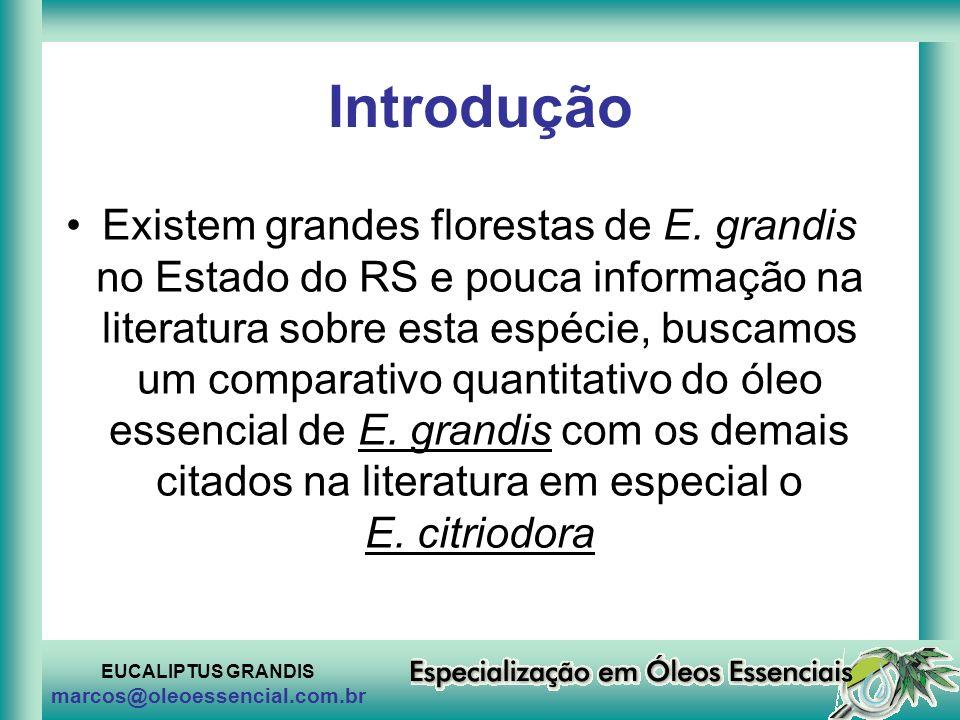 EUCALIPTUS GRANDIS marcos@oleoessencial.com.br Introdução Existem grandes florestas de E. grandis no Estado do RS e pouca informação na literatura sob