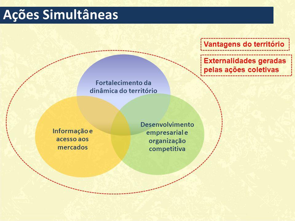 Fortalecimento da dinâmica do território Desenvolvimento empresarial e organização competitiva Informação e acesso aos mercados Vantagens do território Externalidades geradas pelas ações coletivas Ações Simultâneas