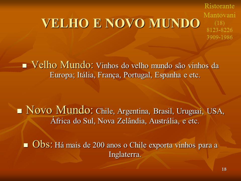 18 VELHO E NOVO MUNDO Velho Mundo: Vinhos do velho mundo são vinhos da Europa; Itália, França, Portugal, Espanha e etc. Velho Mundo: Vinhos do velho m