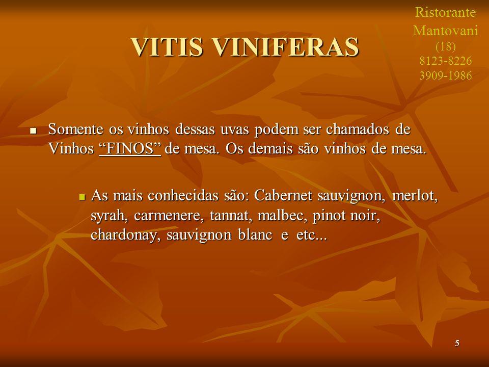 5 VITIS VINIFERAS Somente os vinhos dessas uvas podem ser chamados de Vinhos FINOS de mesa. Os demais são vinhos de mesa. Somente os vinhos dessas uva