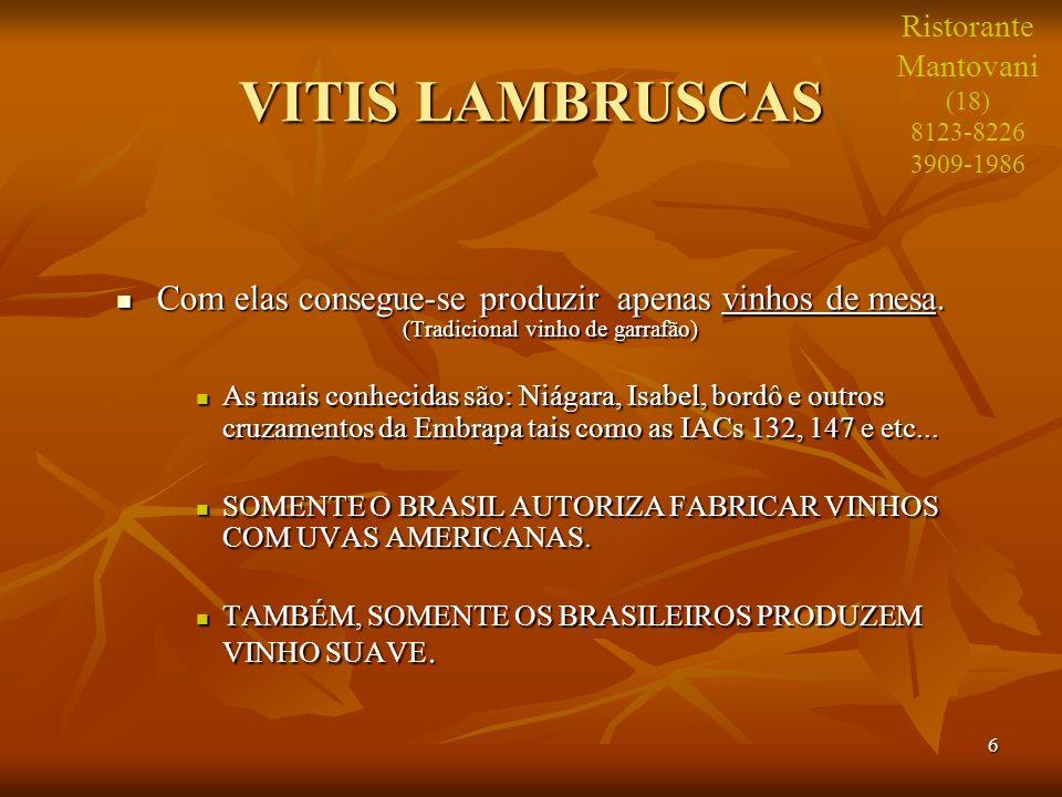 6 VITIS LAMBRUSCAS Com elas consegue-se produzir apenas vinhos de mesa. (Tradicional vinho de garrafão) Com elas consegue-se produzir apenas vinhos de