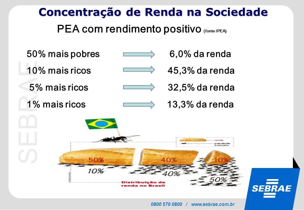 SEBRAE 0800 570 0800 / www.sebrae.com.br 50% mais pobres 6,0% da renda 10% mais ricos 45,3% da renda 5% mais ricos 32,5% da renda 1% mais ricos 13,3%
