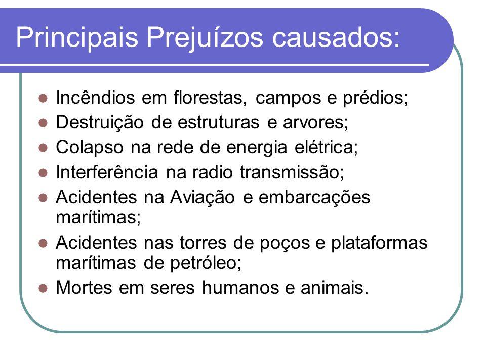 Principais Prejuízos causados: Incêndios em florestas, campos e prédios; Destruição de estruturas e arvores; Colapso na rede de energia elétrica; Inte