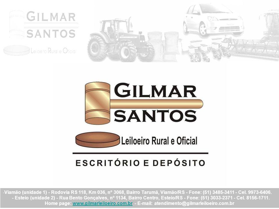 Principais Referências: FERRAMENTAS GERAIS COMÉRCIO E IMPORTAÇÃO S/A.