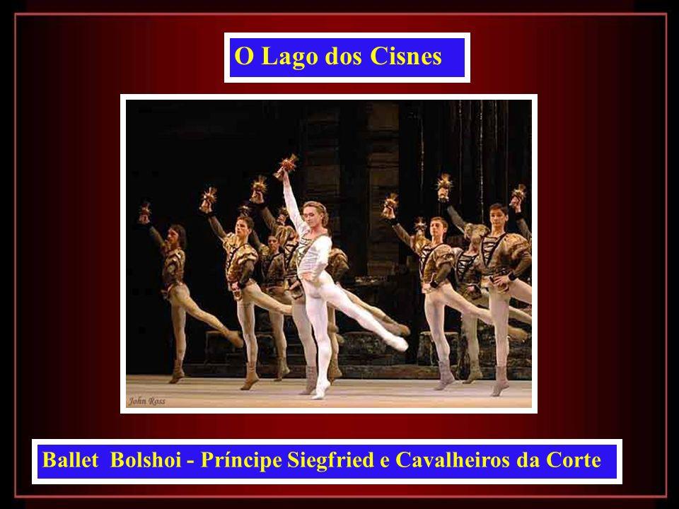 Ballet Bolshoi - Dmitri Gudanov como Príncipe Siegfried O Lago dos Cisnes