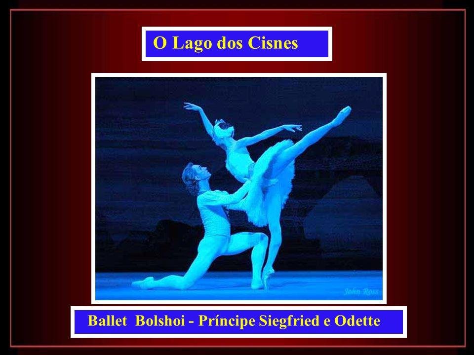 Ballet Bolshoi - Príncipe Siegfried e Odette O Lago dos Cisnes