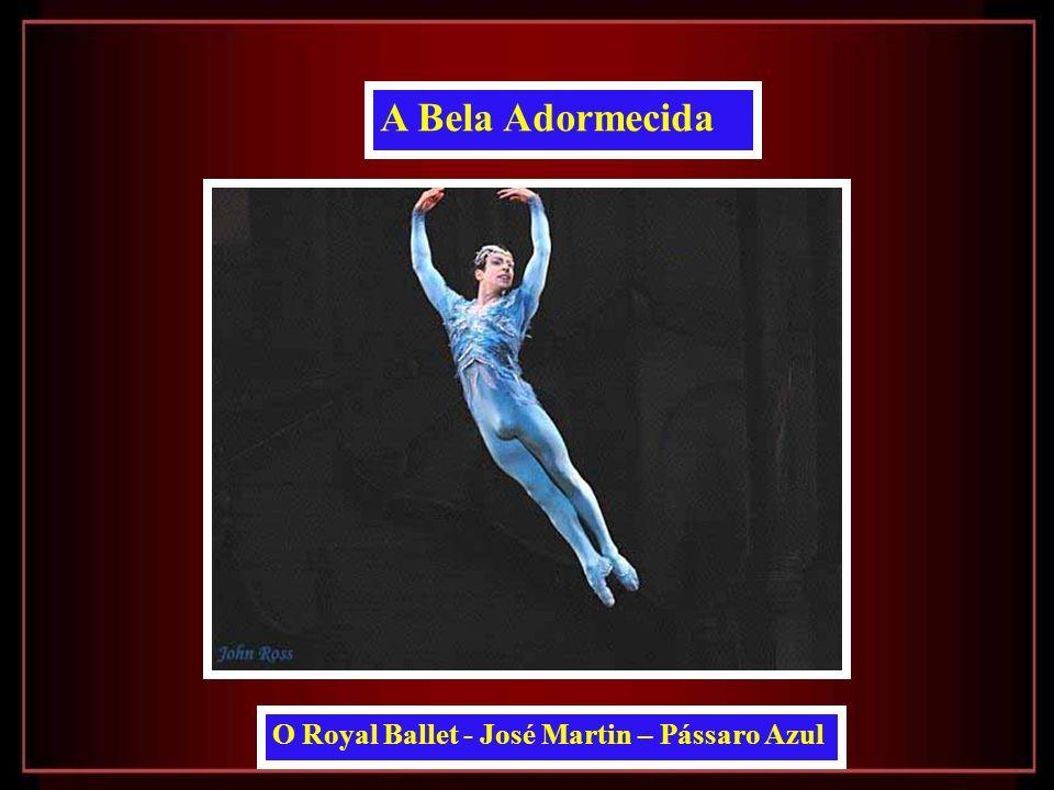O Royal Ballet - José Martin – Pássaro Azul A Bela Adormecida
