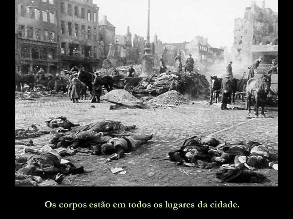 Dresden foi atacada na noite de 13 de fevereiro por cerca de 700-800 bombardeiros britânicos, com 3.000 bombas de alto teor explosivo, para destruir o