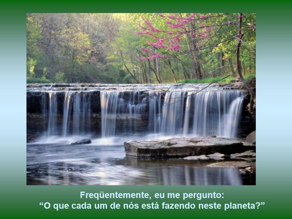 Obras da Natureza, como as grandes cachoeiras, na sua beleza, magnitude e força, nos leva à meditação sobre nossas vidas, nossos destinos, razão de es