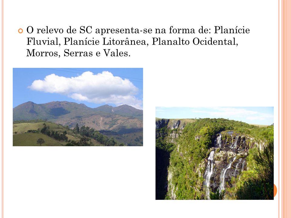 O relevo de SC apresenta-se na forma de: Planície Fluvial, Planície Litorânea, Planalto Ocidental, Morros, Serras e Vales.