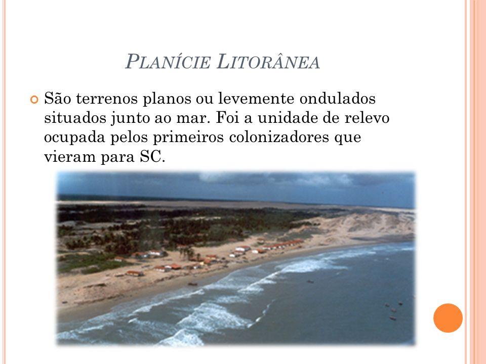 P LANÍCIE L ITORÂNEA São terrenos planos ou levemente ondulados situados junto ao mar.