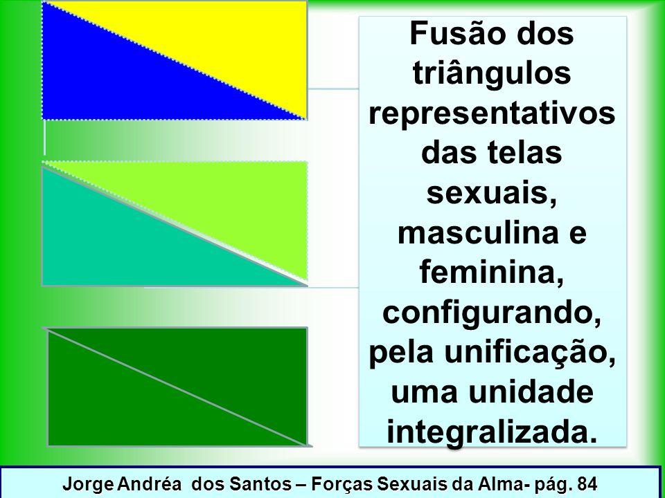Fusão dos triângulos representativos das telas sexuais, masculina e feminina, configurando, pela unificação, uma unidade integralizada.