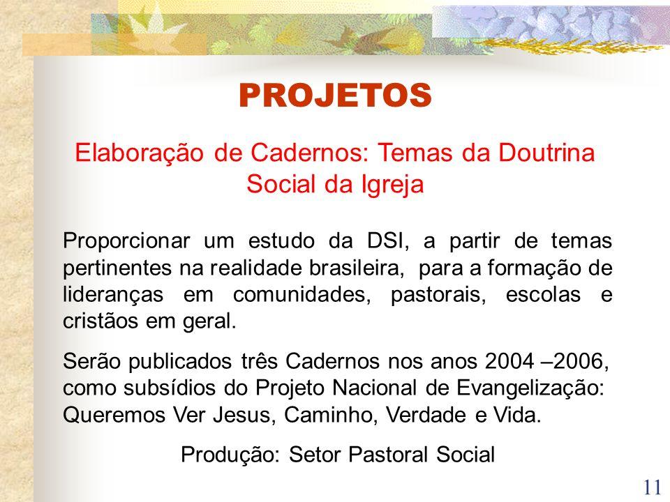 11 Elaboração de Cadernos: Temas da Doutrina Social da Igreja Proporcionar um estudo da DSI, a partir de temas pertinentes na realidade brasileira, pa